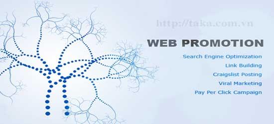 Quảng bá website TAKA