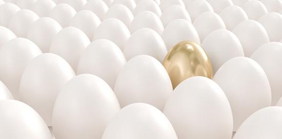 trứng vàng